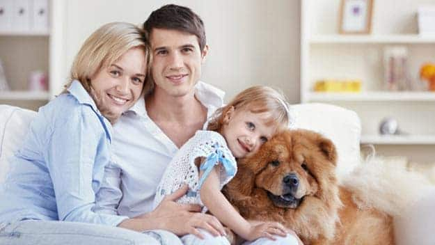 Wills & Trusts dog-young-family Direct Wills Chinnor